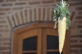 جشن هویجخوران یا جشنواره زردک